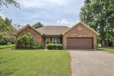 Mount Juliet Single Family Home Under Contract - Showing: 531 Creek Pt