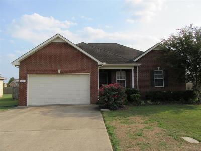 Murfreesboro Single Family Home For Sale: 4919 Pillar Dr