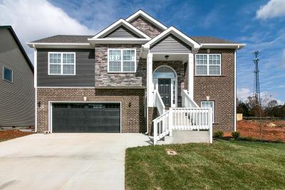 Clarksville Single Family Home For Sale: 131 Locust Run