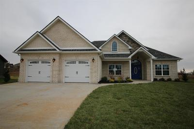 Clarksville TN Single Family Home Under Contract - Not Showing: $291,400