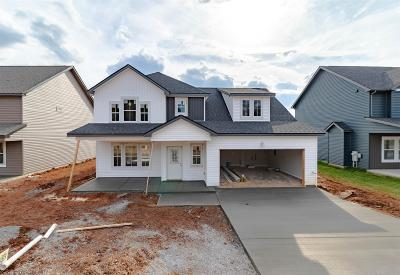 Clarksville Single Family Home For Sale: 1136 Eagles View Dr
