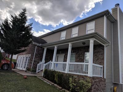 Single Family Home For Sale: 146 Mary Joe Martin Dr