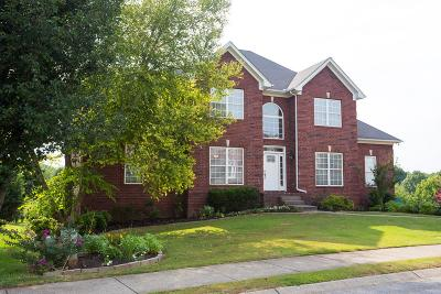 Hendersonville Single Family Home For Sale: 206 Crooked Creek Ln