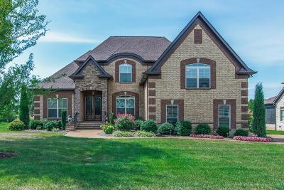 Mount Juliet Single Family Home For Sale: 1211 Abernathy Way