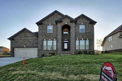Clarksville TN Single Family Home For Sale: $409,900