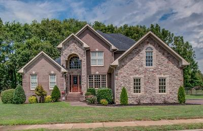 Hendersonville Single Family Home For Sale: 1056 Gadwall Cir