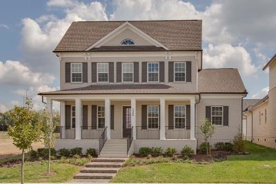 Hendersonville Single Family Home For Sale: 1566 Drakes Creek Rd Lot 13