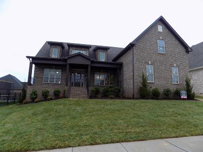 Spring Hill Single Family Home For Sale: 5003 Wallaby Drive (364)