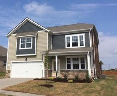 Maury County Single Family Home For Sale: 8052 Forest Hills Drive, #341