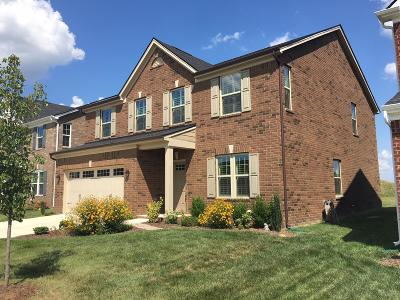 Spring Hill Single Family Home For Sale: 204 Burnwick Ct
