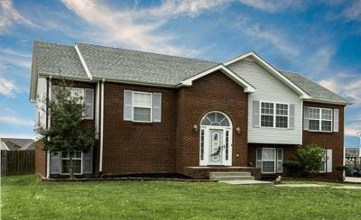 Clarksville Single Family Home For Sale: 3176 Twelve Oaks Blvd