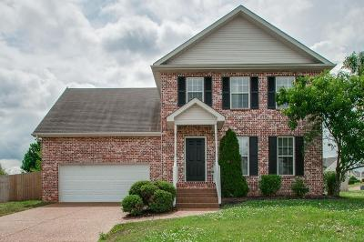 Spring Hill Single Family Home For Sale: 1009 Golf View Way