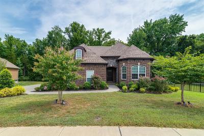 Hendersonville Single Family Home For Sale: 102 Beacon Light Cv