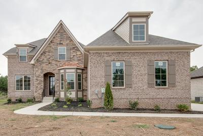 Smyrna Single Family Home For Sale: 7116 Springwater St - Lot 42