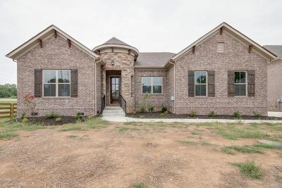 Smyrna Single Family Home For Sale: 7120 Springwater St -lot 43
