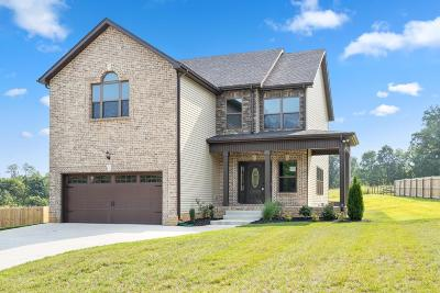 Clarksville Single Family Home For Sale: 1673 Dotsonville Rd