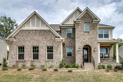 Hendersonville Single Family Home For Sale: 106 North Malayna Dr Lot 88