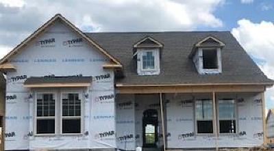 Hendersonville Single Family Home For Sale: 1573 Drakes Creek Rd Lot 146