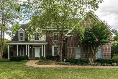 Hendersonville Single Family Home For Sale: 123 Elm Hill Cir