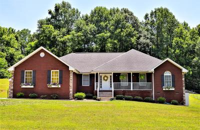 Cheatham County Single Family Home For Sale: 1649 Old Clarksville Pike