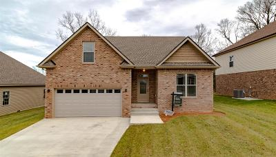 Clarksville Single Family Home For Sale: 309 Chase Dr