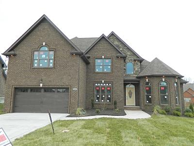 Clarksville Single Family Home For Sale: 19 Porter Hills