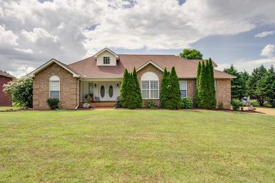 Spring Hill Single Family Home For Sale: 1300 Mallard Dr
