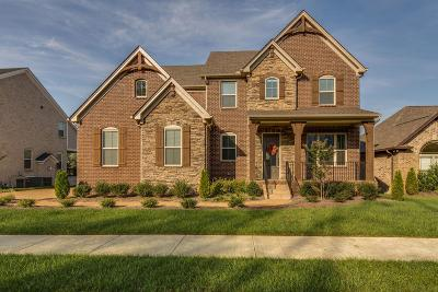 Hendersonville Single Family Home For Sale: 204 South Malayna Dr Lot 149