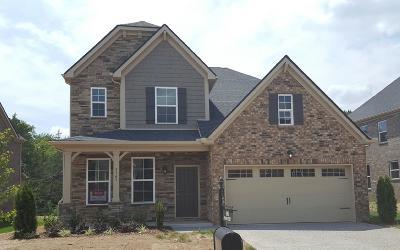 Mount Juliet Single Family Home For Sale: 5465 Pisano Street Lot # 19