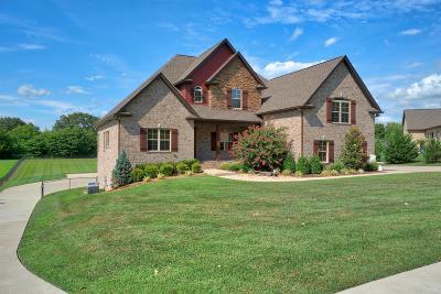 Robertson County Single Family Home For Sale: 225 Joy Ln