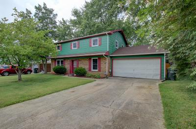 Christian County Single Family Home For Sale: 919 Springmont Drive