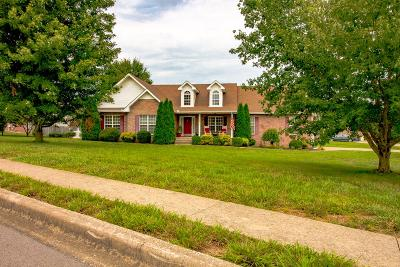 Clarksville Single Family Home For Sale: 400 Waterfall Dr