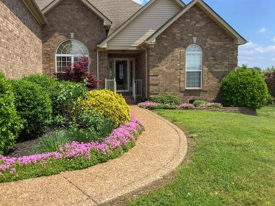 Lavergne Single Family Home For Sale: 8028 Burntwood Dr