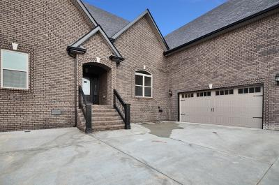 Clarksville Single Family Home For Sale: 82 Terraces Of Hearthstone