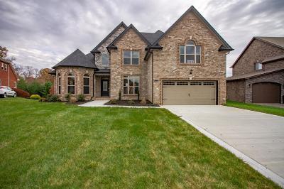 Clarksville Single Family Home For Sale: 263 Farmington