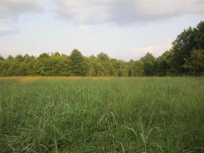 Smyrna Residential Lots & Land For Sale: 6265 Rocky Fork Rd