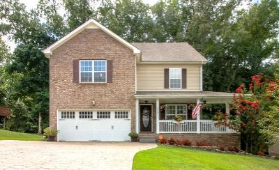 Clarksville Single Family Home For Sale: 570 Winding Bluff Way
