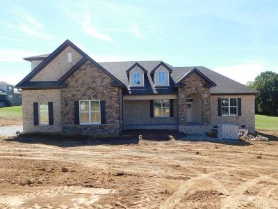 Maury County Single Family Home For Sale: 40 Tom Osborne