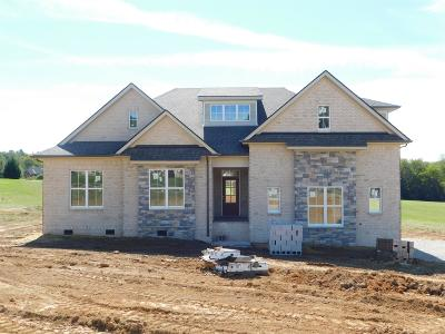 Maury County Single Family Home For Sale: 39 Tom Osborne