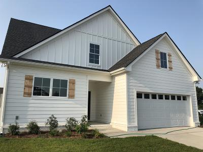 Single Family Home For Sale: 607 Gallant Way