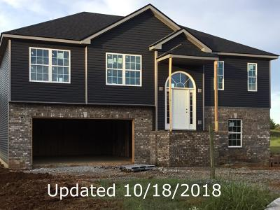 Clarksville Single Family Home For Sale: 239 Autumn Creek