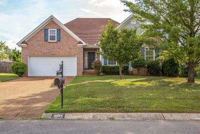 Spring Hill  Single Family Home For Sale: 1035 Persimmon Dr