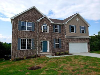 Hendersonville Single Family Home For Sale: 137 Manor Way