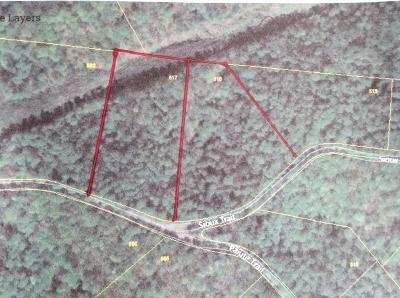 Pegram Residential Lots & Land For Sale: Sioux Trl-Lot 518