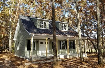 Woodbury Single Family Home Under Contract - Showing: Carole Anne Drive