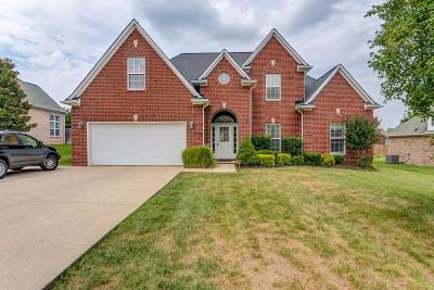 Brentwood, Fairview, Franklin, Spring Hill, Thompson's Station, Thompsons Station Single Family Home For Sale: 3047 Sakari Cir