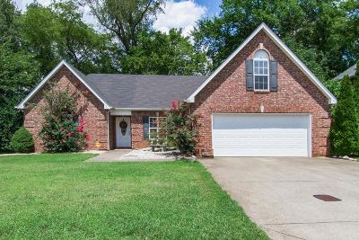 Rutherford County Single Family Home For Sale: 303 Titans Cir