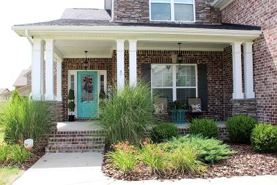 Spring Hill Single Family Home For Sale: 1031 Via Francisco Way