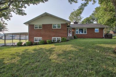 Wilson County Single Family Home For Sale: 507 Rome Pike