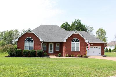 Portland Single Family Home For Sale: 115 Chasity Ln